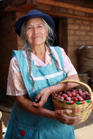 Community-based tourism provides a complementary source of income for farmers in Oaxaca