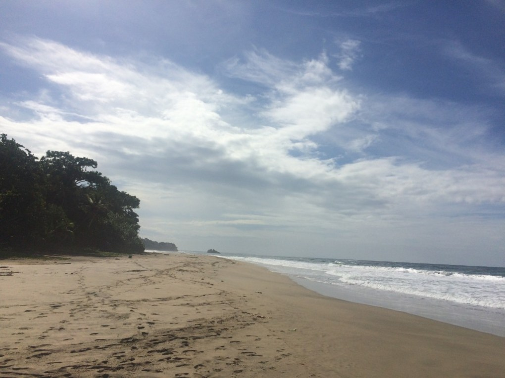 Cocles beach, between Punta Uva and Puerto Viejo, Costa Rica