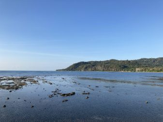 Visiting Cabuya Island and enjoying the view over the Cabo Blanco Nature Reserve in the Nicoya Peninsula