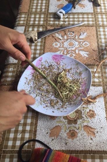 Plant Prep