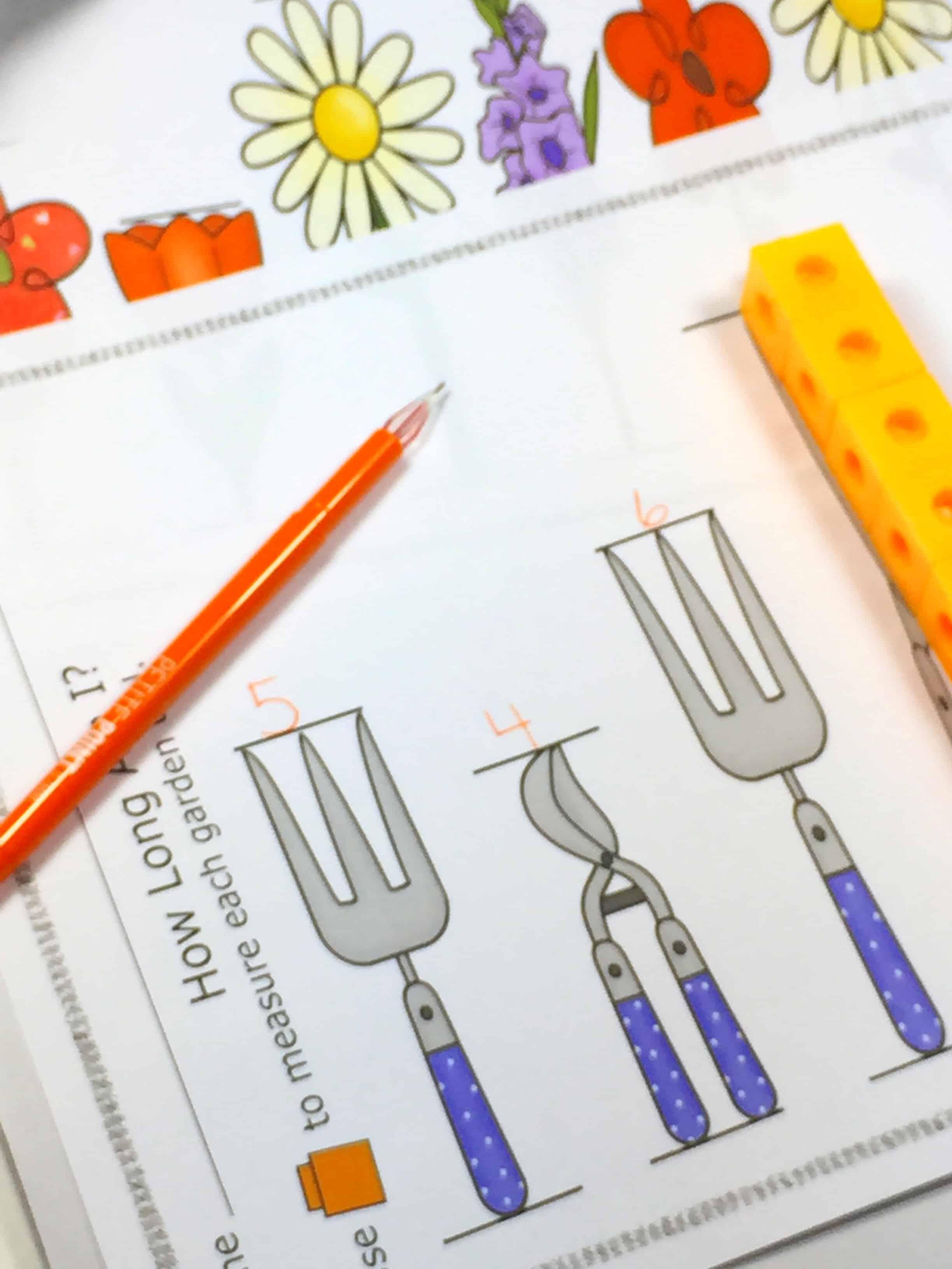 Measurement Activities First Grade