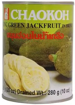 canned jackfruit