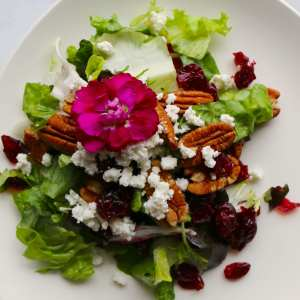cranberry, pecan, goats cheese, salad, vegetarian, catering, fresh