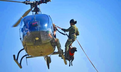 Nigeria Air Force Personnel Under-Going K-9 Training