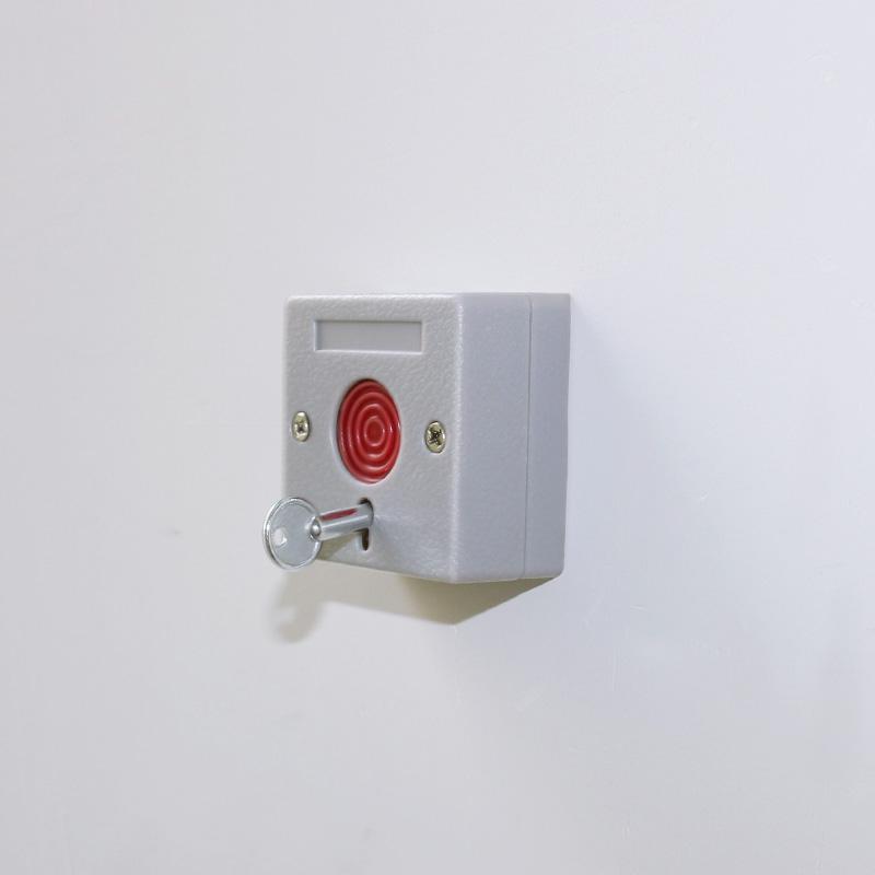 Security Alarm Manual