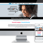 Just Launched: Ebony Marketing Systems
