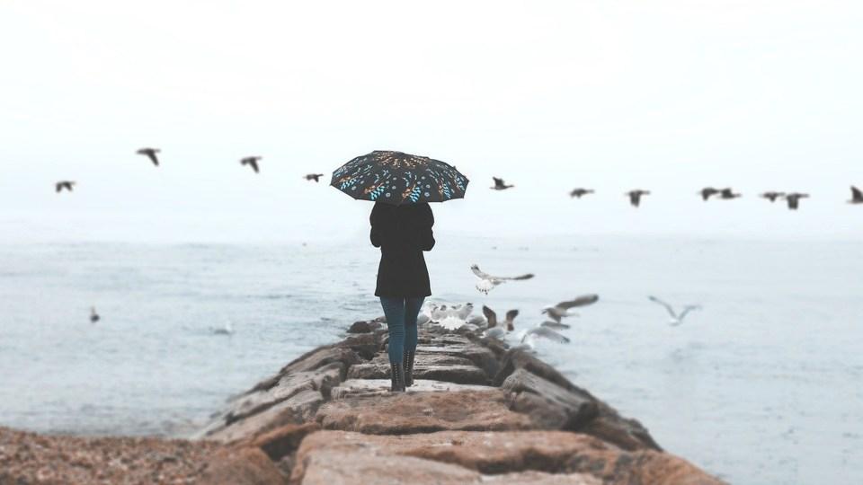 Cannes : 6 activités à faire par temps de pluie !