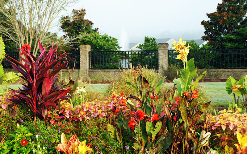 Front Gate Flowers