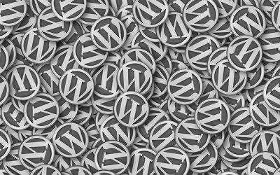 WordPress Training Sunshine Coast