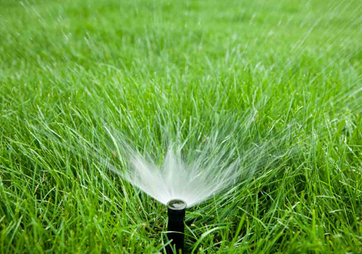 Watering Guidelines for Katy/Cypress/Fulshear/Houston and Surrounding Areas