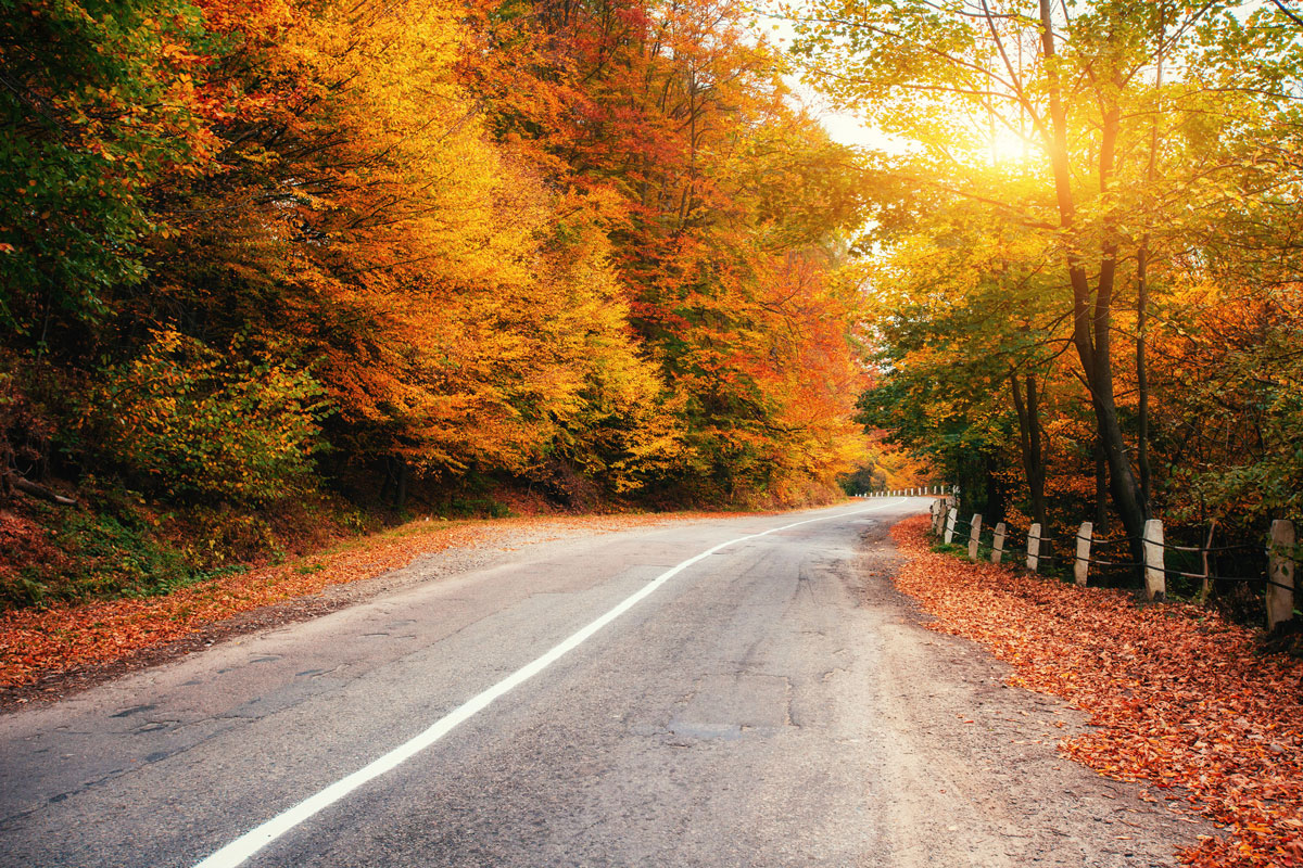 5 Destinations with the Prettiest Fall Drives