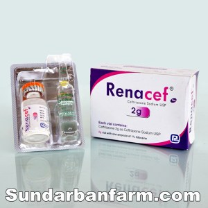 Renacef-Injection