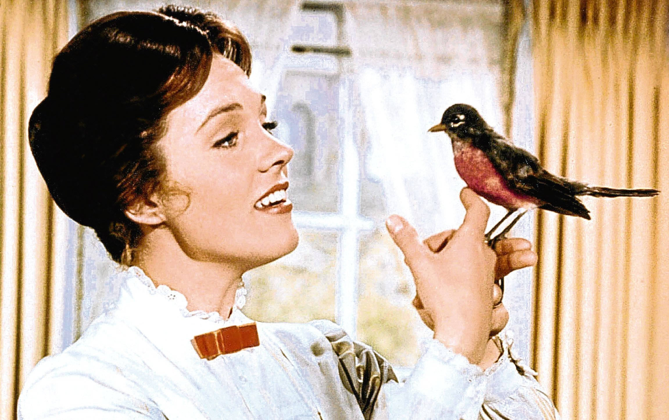 julie andrews on mary