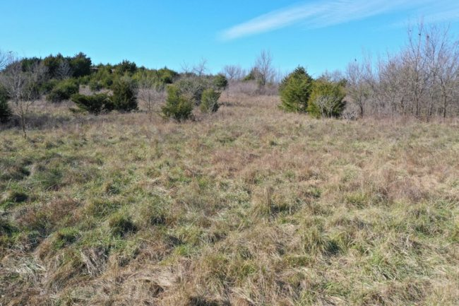 245+- Acres Wilson County Kansas Land For Sale