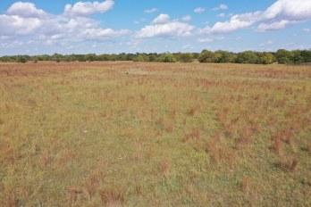 157 Acres Harper County Kansas near Attica