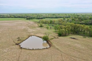 160 Acres Greenwood County Pasture Land