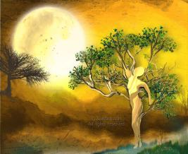 Golden Moon - Sundrip on Redbubble