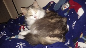 Mary Jane on snowman blanket