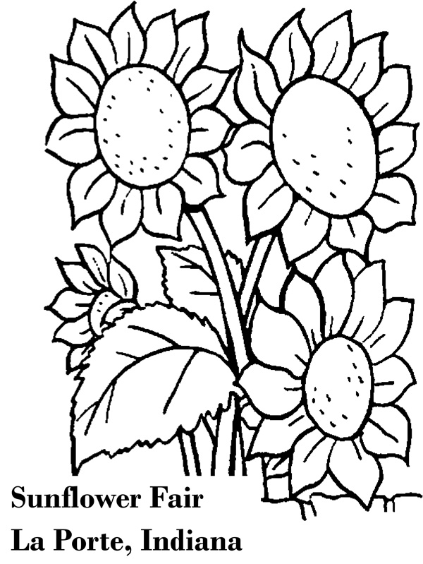 Free coloring pages of to fair