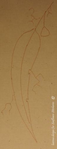 Outline of gumleaf