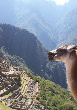 Luxury Peru - Escape to Cusco and more