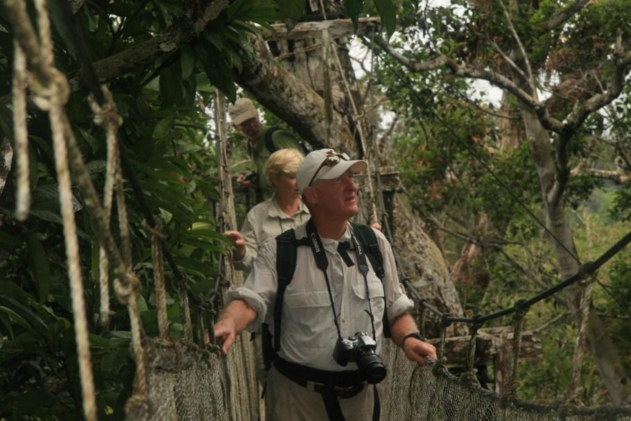 amazon jungle with canopy walkway