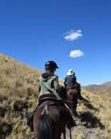 cropped-horseback-riding.jpg