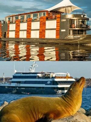 Cruises River and sea