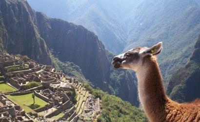 Lima - Tambopata Rainforest - Machu Picchu cusco peru