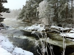 Snowy Winter Holiday