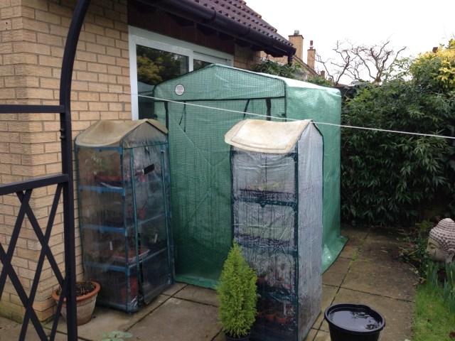Patio Greenhouses