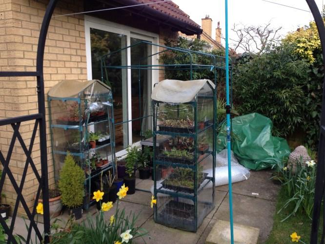 Greenhouse Down