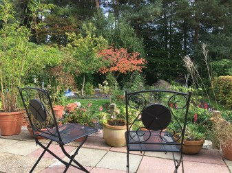 Two Chairs on the Patio in Autumn