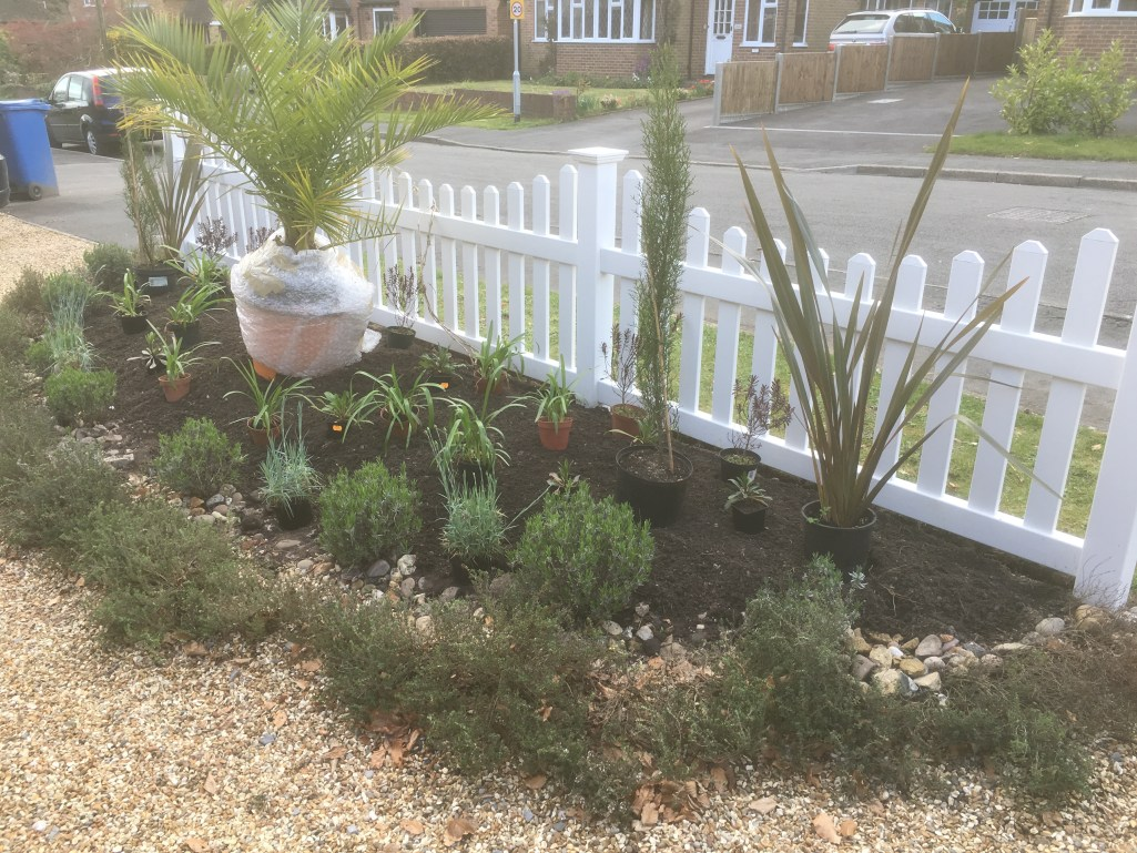 Laying out the Plants for the New Front Border