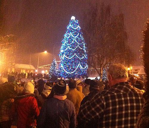 Oh Christmas Tree, Oh Christmas Tree ...