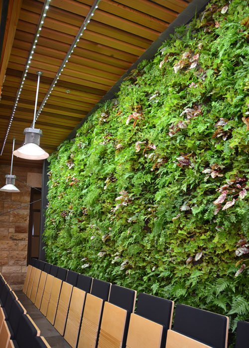 Green Wall Lighting  Sunlite Science and Technology Inc