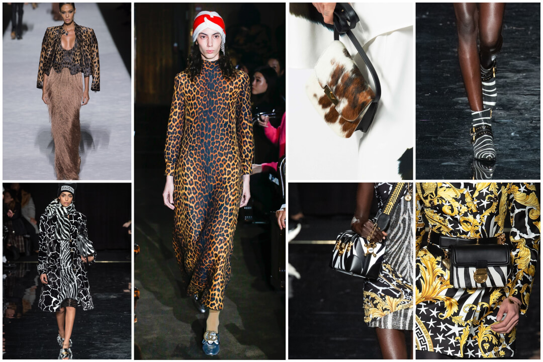 animal print fashion- runway