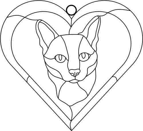 Cat Tabby