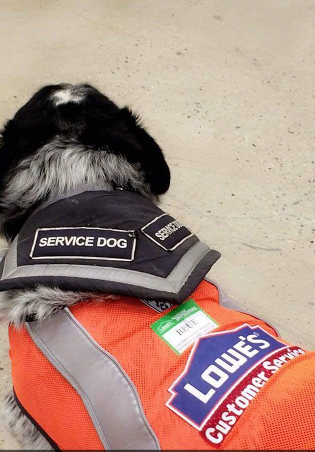 Lowes hires man with service dog