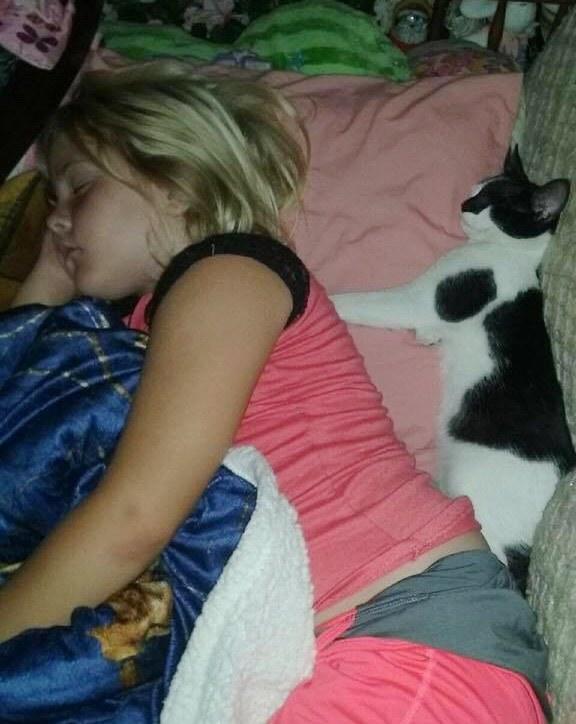 cat saves girl from rattlesnake