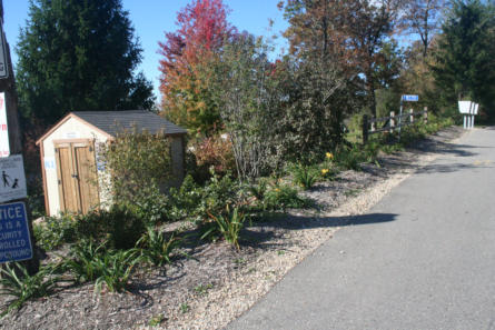 commercial landscaping business
