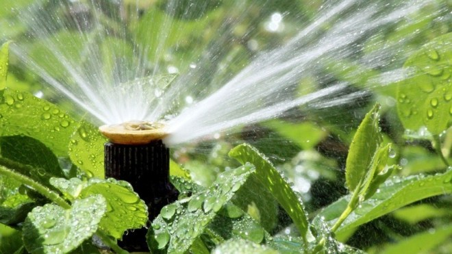 5 Factors That Decide Irrigation Frequency