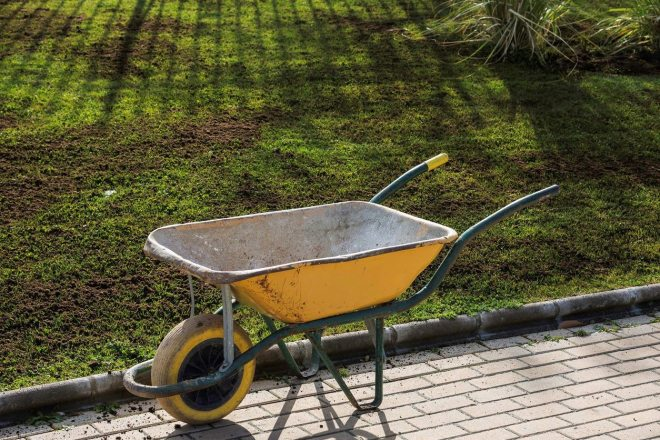 5 Things to Do to Protect Your Tampa Bay Lawn This Winter