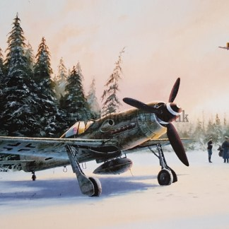 Eastern Front Eagles