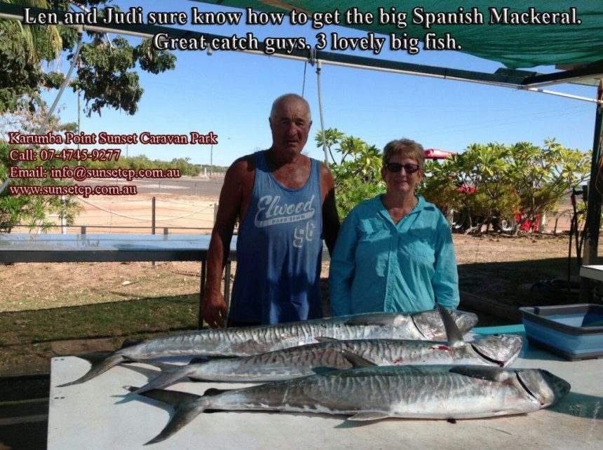 Len-and-Judi-sure-know-how-to-get-the-big-Spanish-Mackeral.-Great-catch-guys.-3-lovely-big-fish.