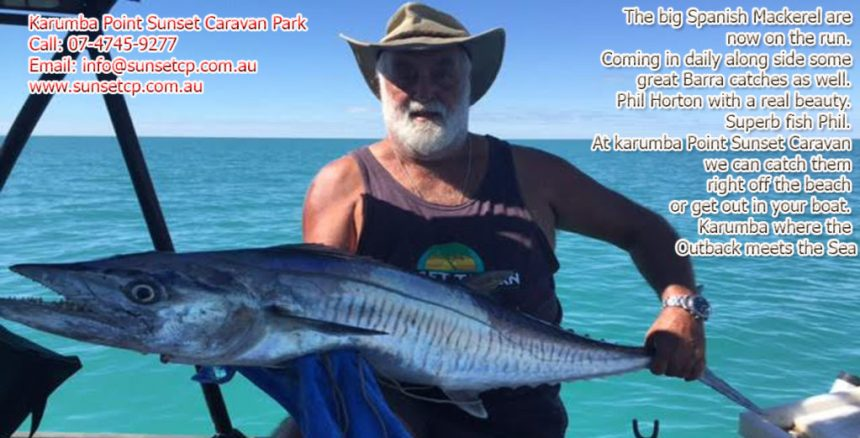 The big Spanish Mackerel are now on the run