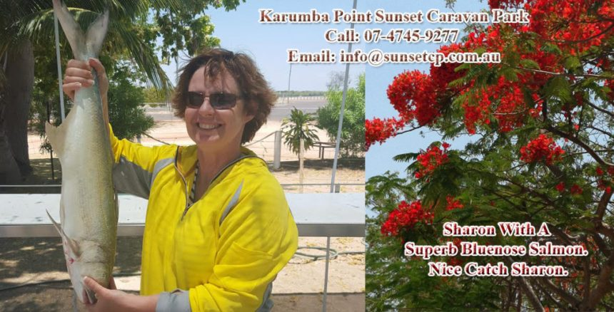 Karumba Point Sunset Caravan Park Fishing Accommodation Hotel Cabin Villas