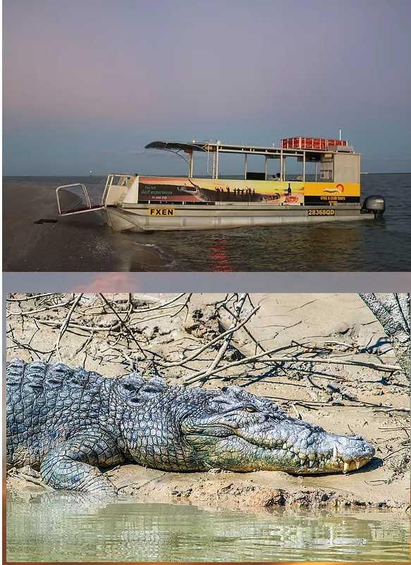 Croc and Crab Cruises Karumba