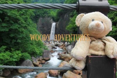 Heart-to-Art: Woody Adventures #6