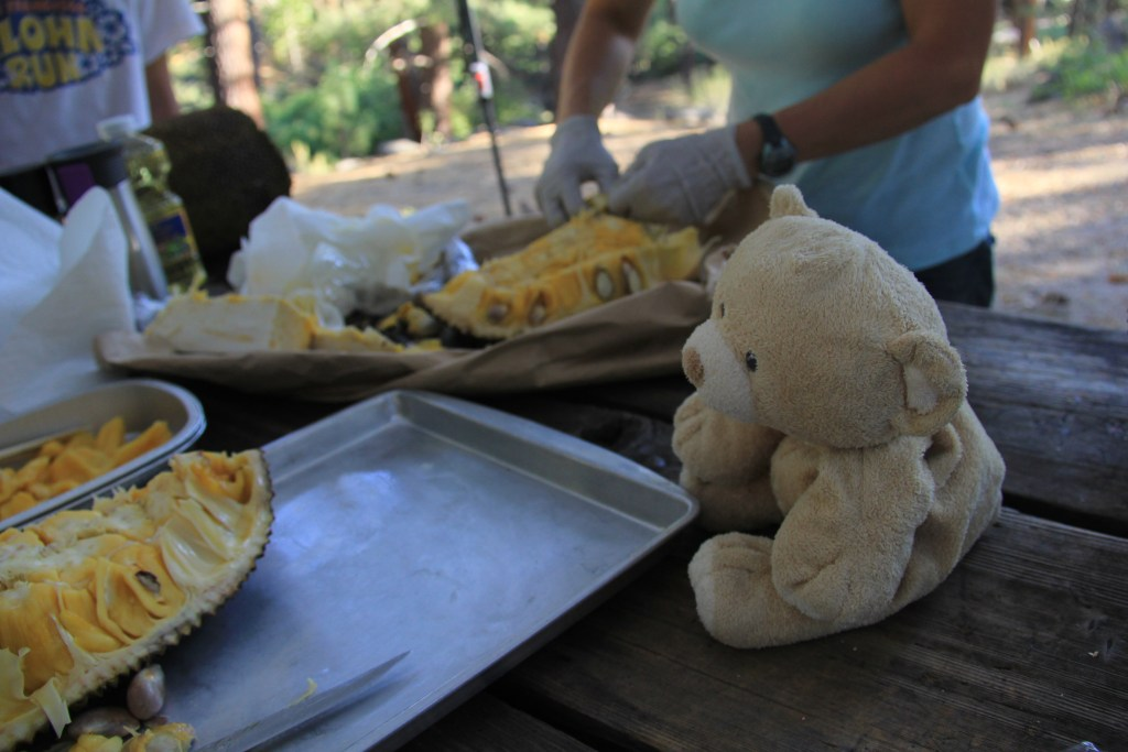 Woody learning how to cut jackfruit at the campsite in Grover Springs.